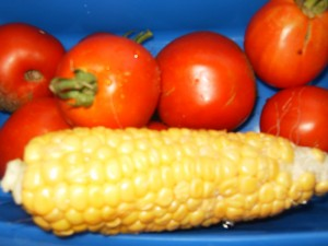 corn and tomatoes from garden