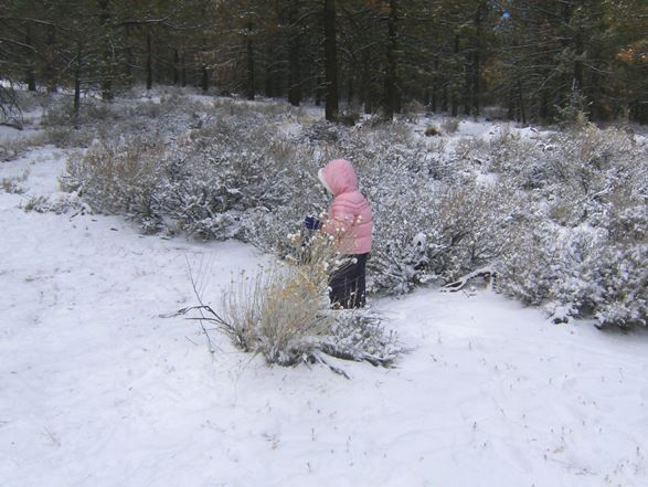 Little girl in the snow